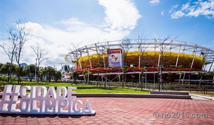 Житель россии завоевал «золото» наОлимпиаде-2016 турнире побоксу вРио